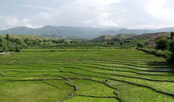 اراضی دارای رأی کمیسیون ماده 56 جنگلها و مراتع